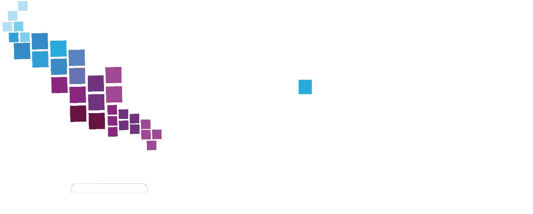 Elitex Micros Ltd